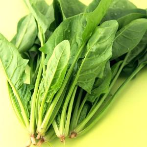 菠菜(Spinach)