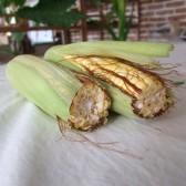 黄糯玉米(Fresh Sticky Corn)