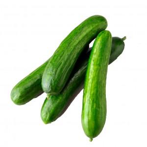 水果黄瓜(Fruit cucumber)