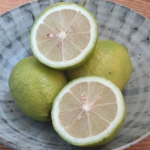 有机青柠檬(Organic green lemon)