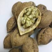 老树纸皮干核桃(Dried walnuts)