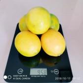 黄金柠檬/eco-lemon