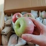 国光苹果/老品种/酵素种植/自然光照/甜美多汁/基地直发