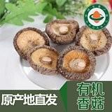 有机香菇90g/脱水干燥/黑龙江伊春深山
